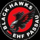 EHF Passau